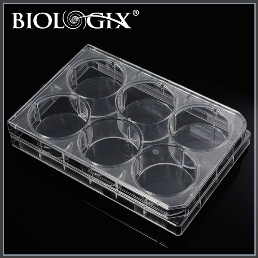 Biologix 6 Well Cell Culture Plate